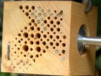 Bee's Box /Habitée