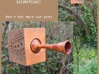 Bee's Box /Wave