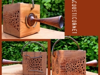 Bee's Box /Acousticornet