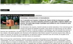 l-art-du-jardin-web